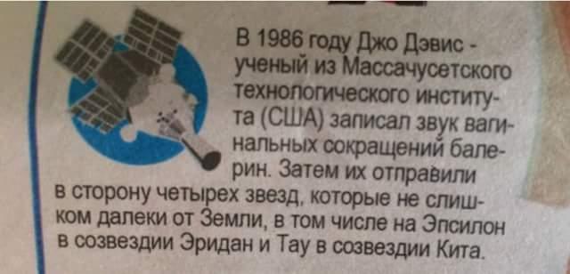 тупня - 101