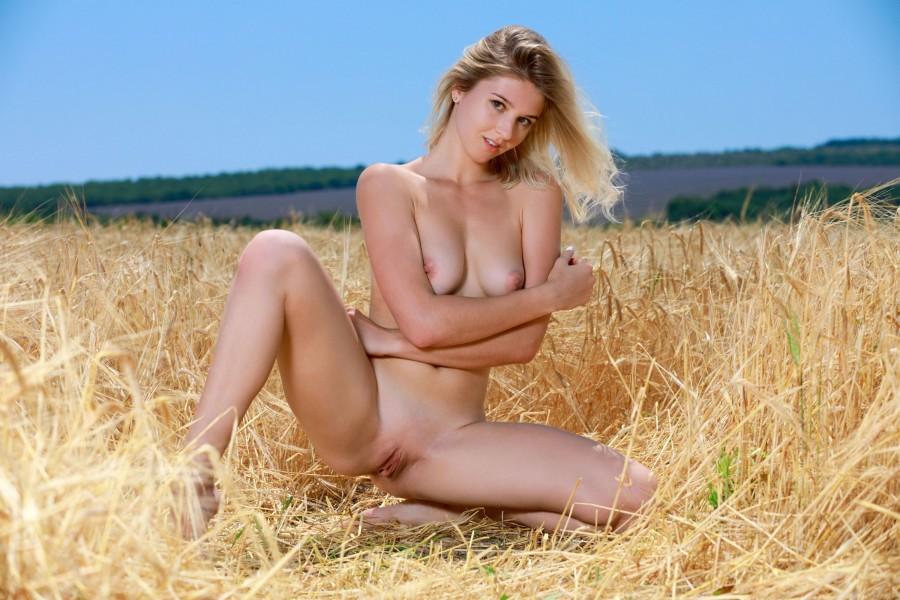"""""""Кто-то в поле стал ходить и пшеницу шевелить..."""""""